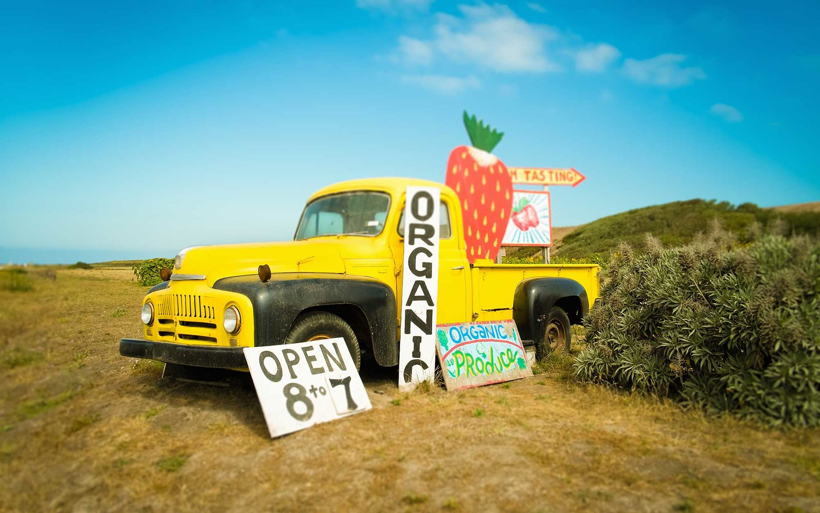 Yellow pickup truck and strawberry jam advertisement on roadside, Big Sur, Davenport, California, USA