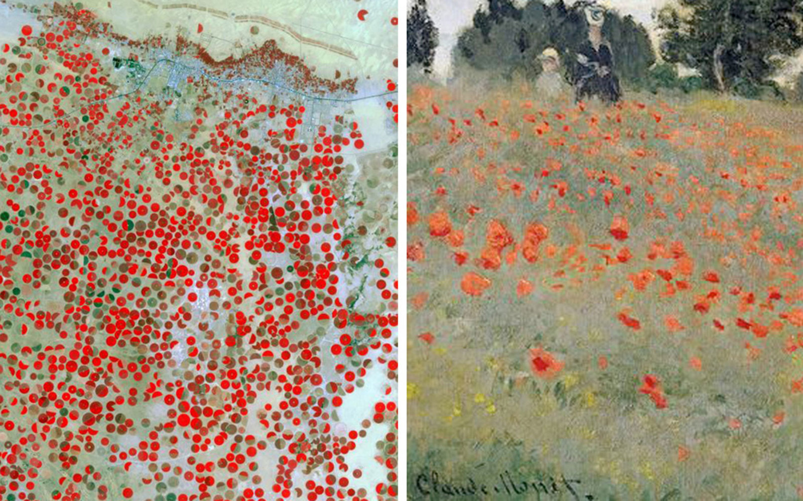 Pictured left: The Wadi Al Dawasir region of Saudi Arabia in the Arabian Desert on March 30, 2013; Pictured right: Claude Monet, Poppies, 1873