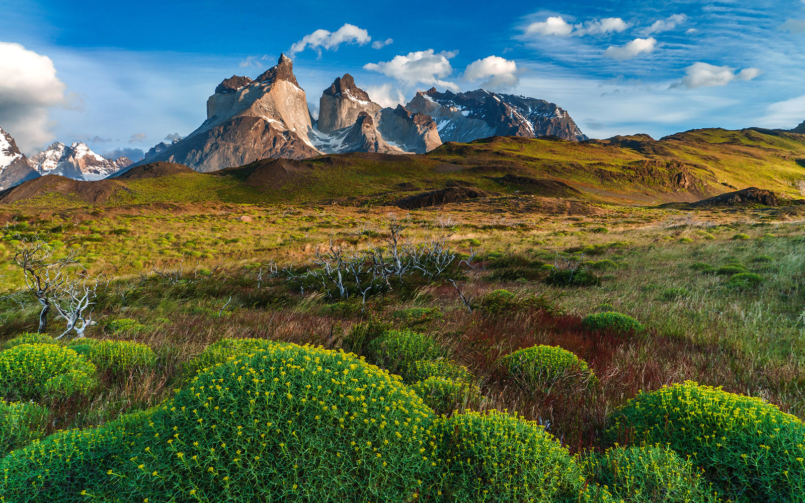 National Park Torres del Paine in southern Chile
