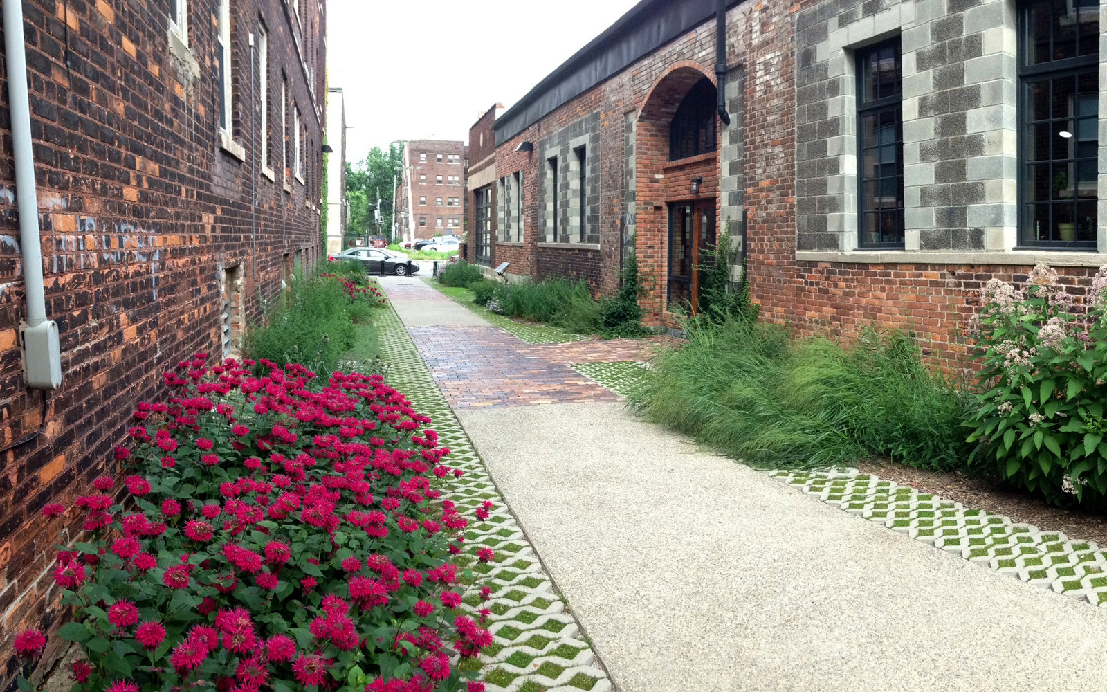 The Detroit Green Alley in Detroit