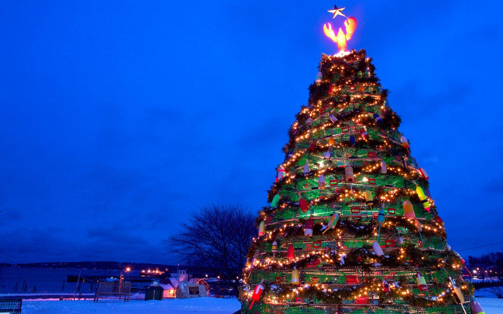 The Wackiest Christmas Trees in the World