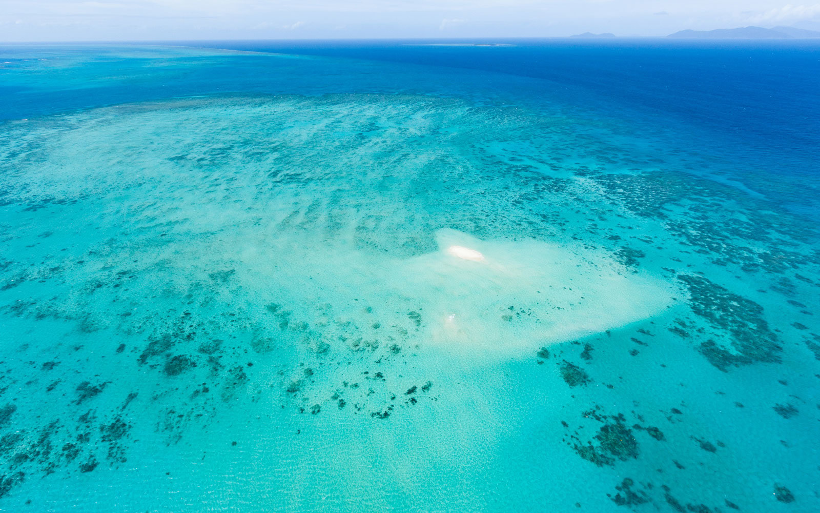 Guide to the Great Barrier Reef