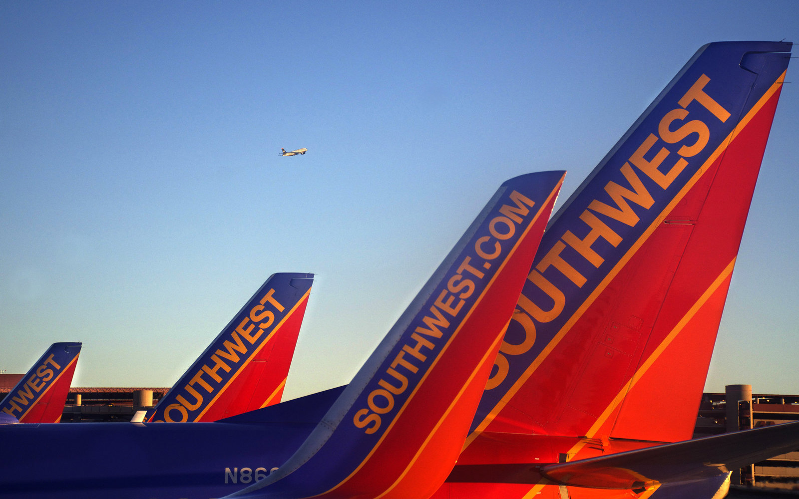 3 New Airlines Offer Deals