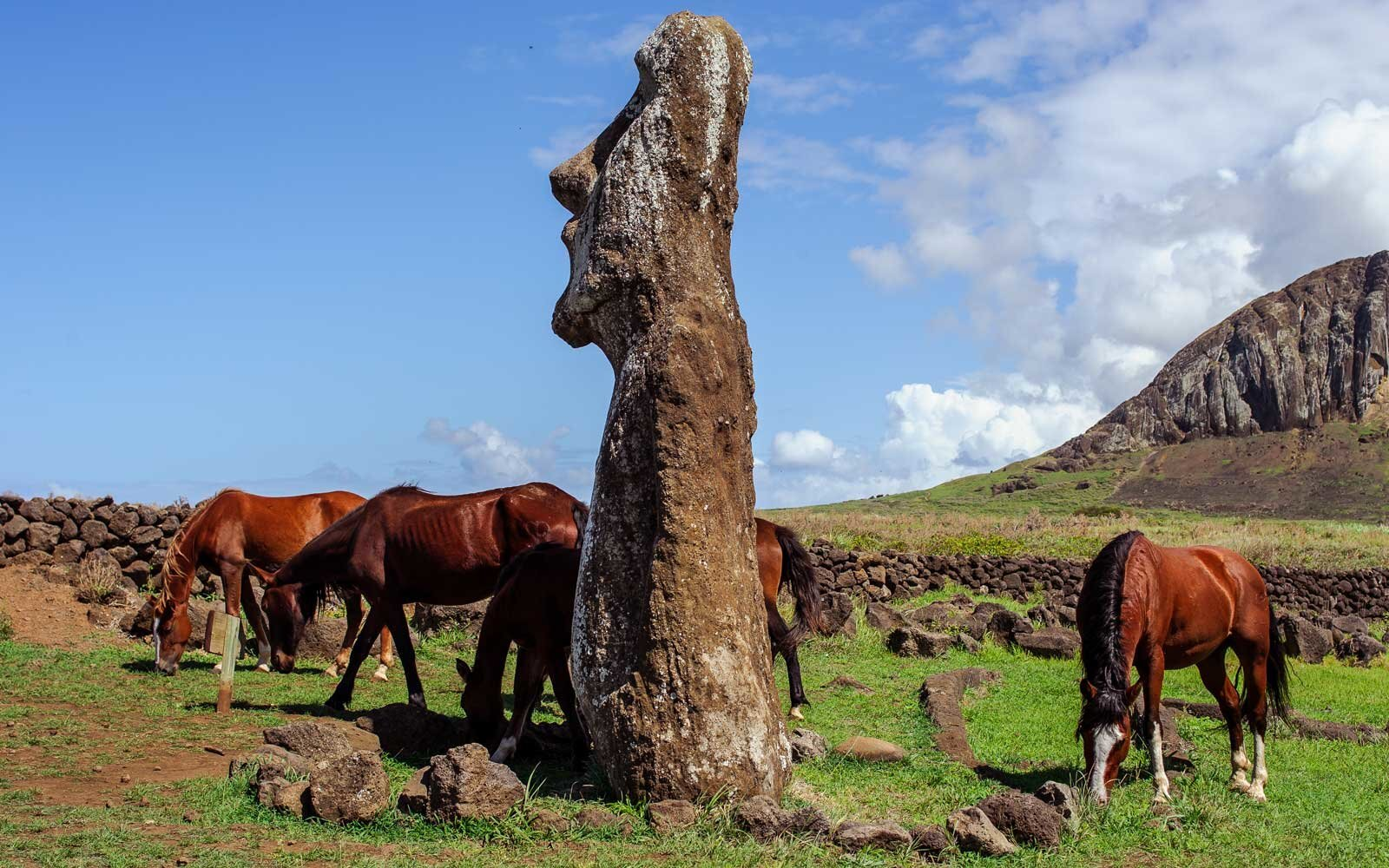 How to Travel to Easter Island   Travel + Leisure
