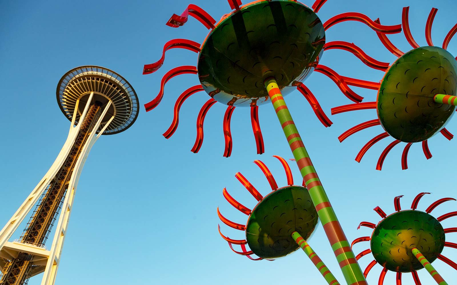 'Sonic Bloom' – Space Needle Tower, Seattle