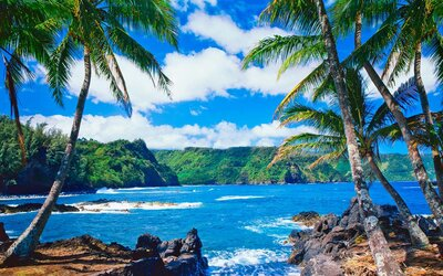 Tinder Is Sending Two People to Maui After They Messaged
