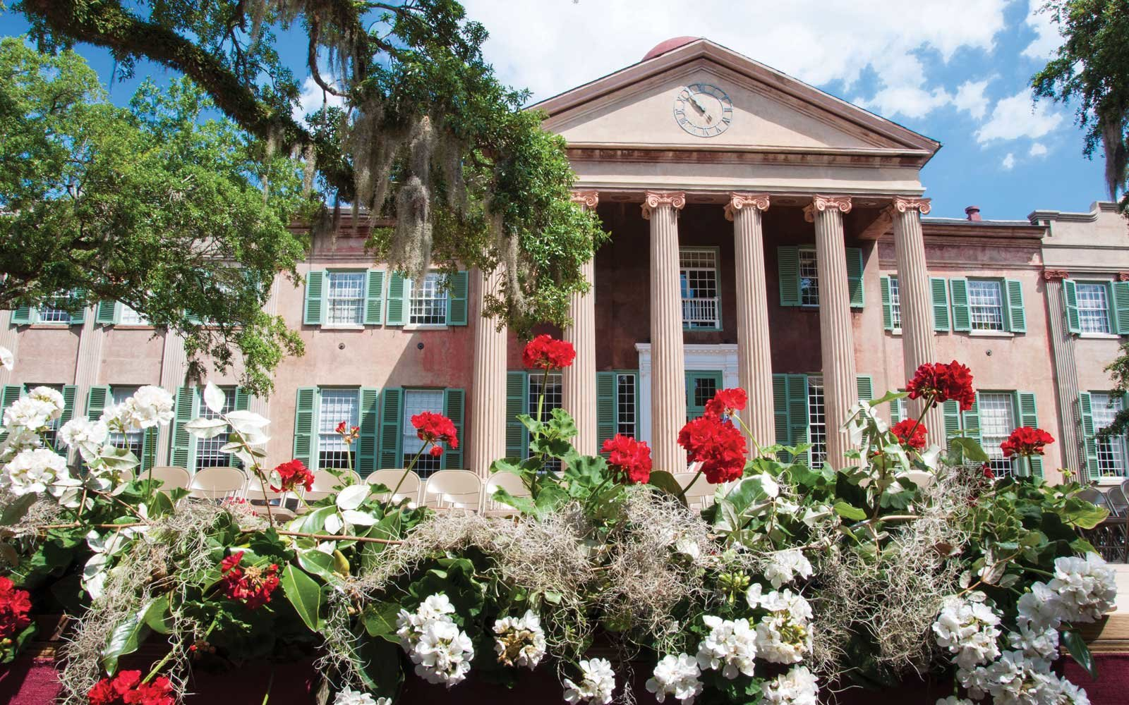 College of Charleston SC Flowers