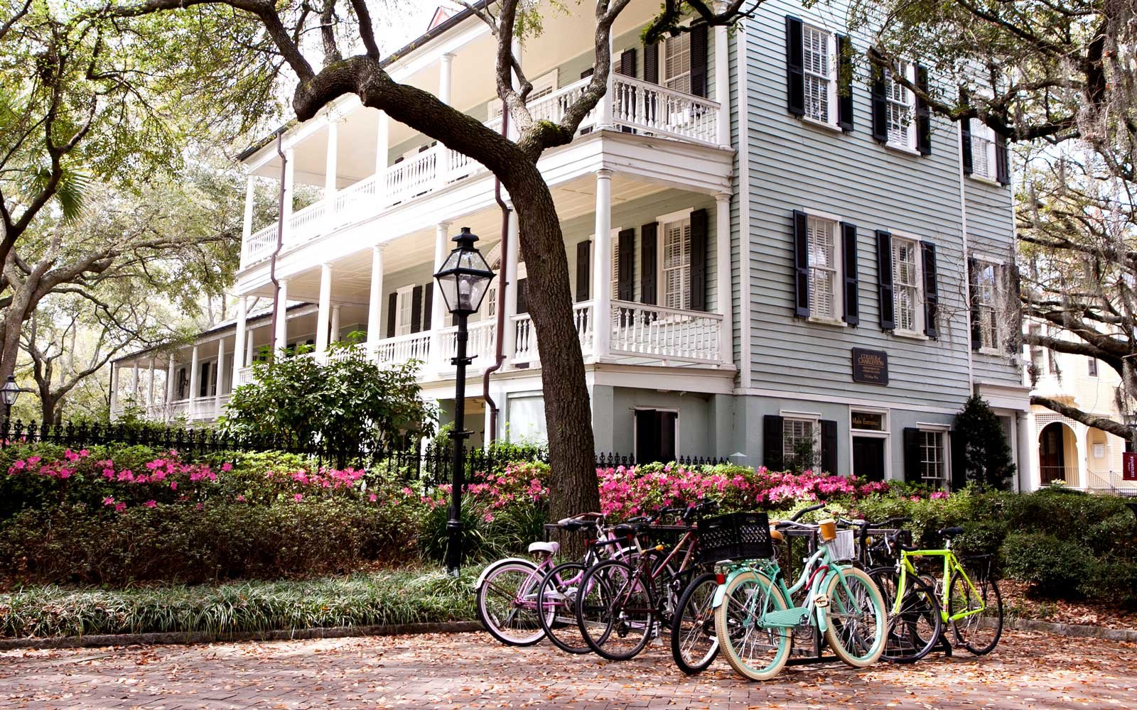 College Way, College of Charleston