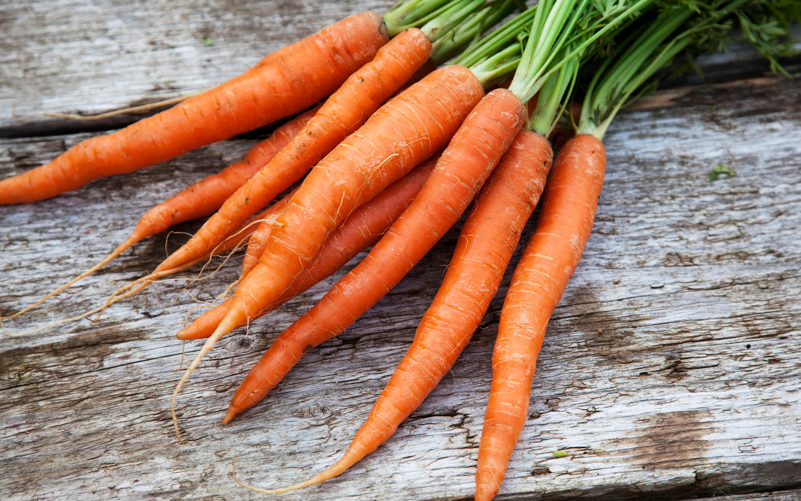 A bunch of freshly picked organic carrots on rough wooden surface
