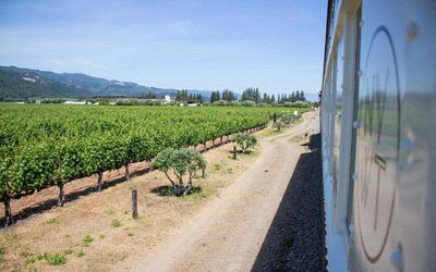 The Napa Valley Wine Train Might Be the Best Day Trip Ever | Travel