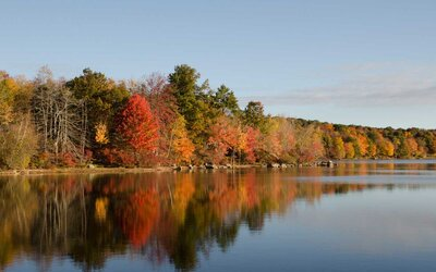 Foliage Map New York 2017.The Best Places To See Fall Foliage In New York State Travel Leisure