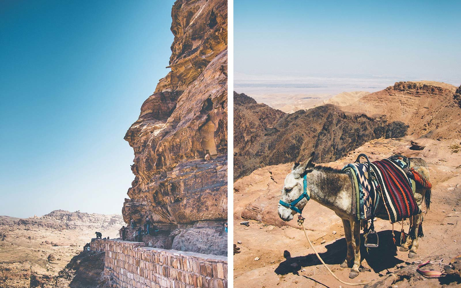 From Dana to Petra, 6 Days on The New Jordan Trail Donkey