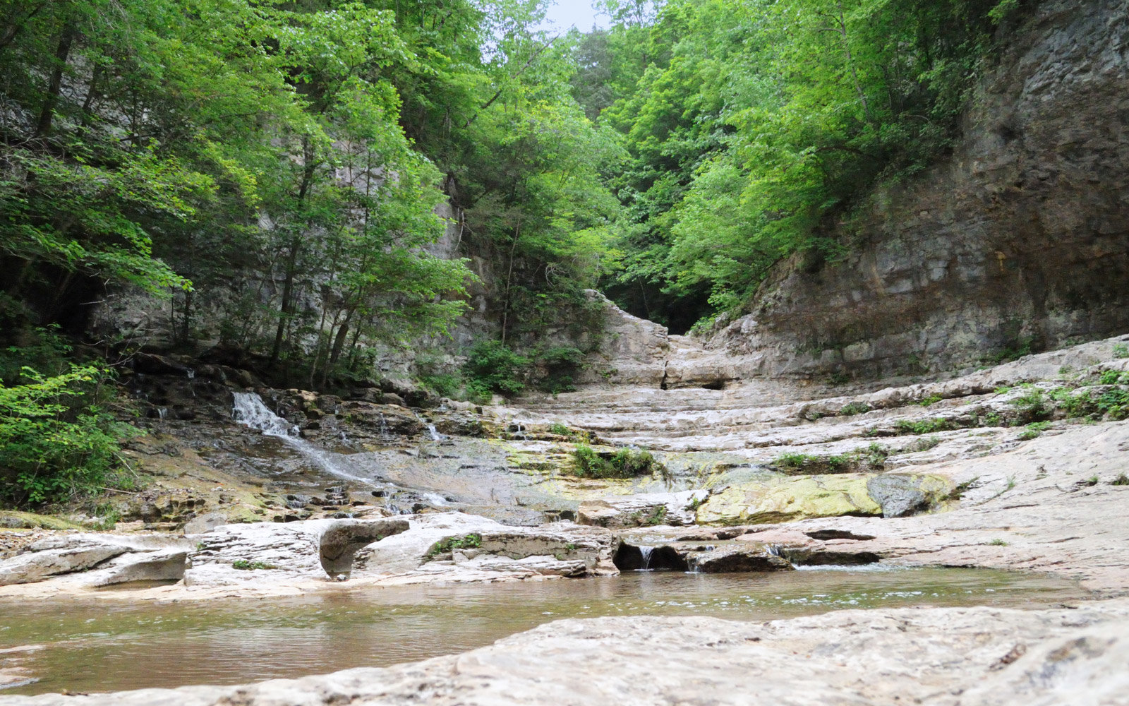 Photograph looking into Walls of Jericho canyon in northern Alabama.  Canyon is located at the end of a trail near the Tennessee State Line.