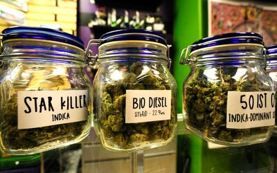 Top Denver Dispensaries and Cannabis Tours | Travel + Leisure