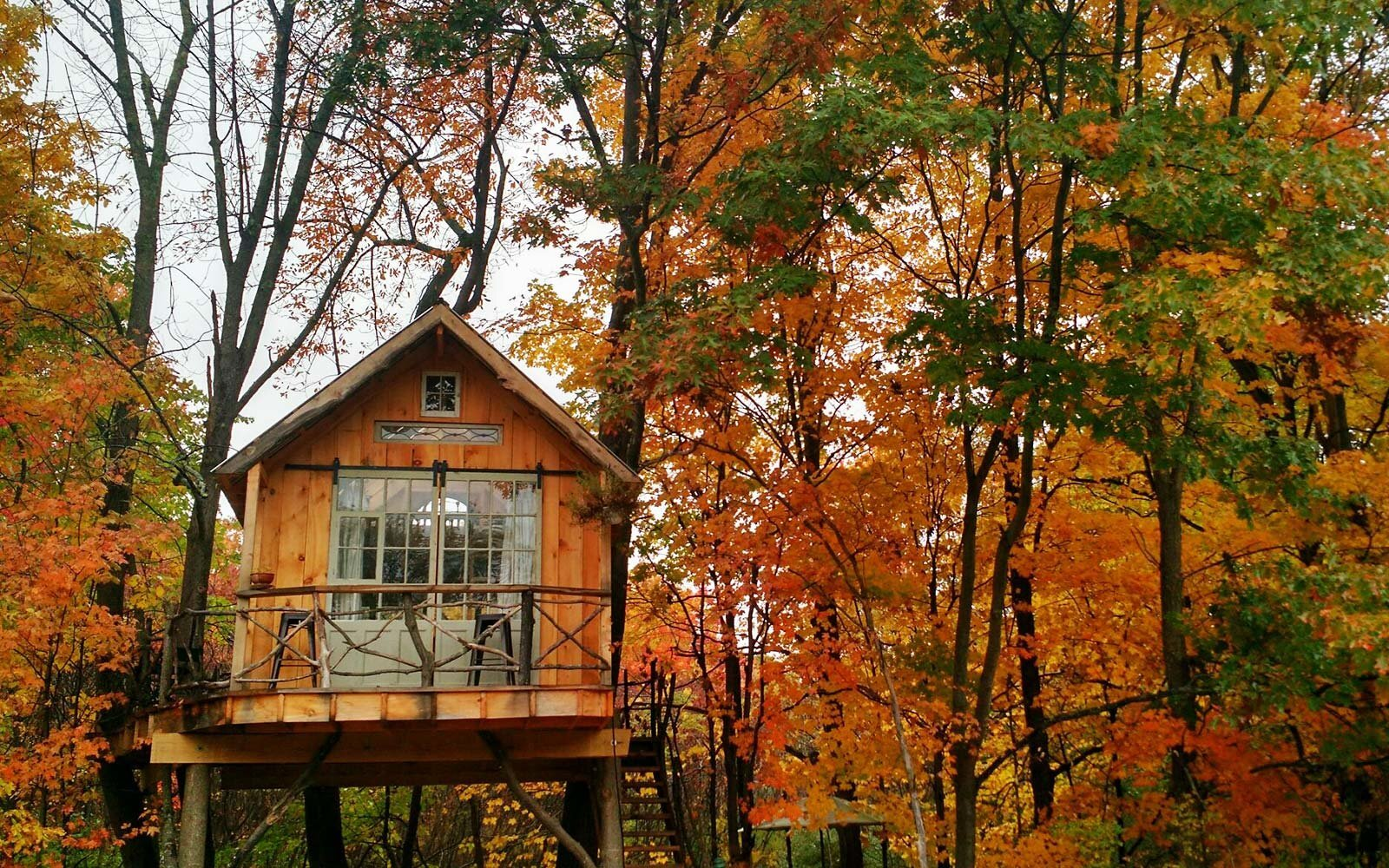 The Best Airbnbs to Rent for Fall Foliage Views | Travel + Leisure