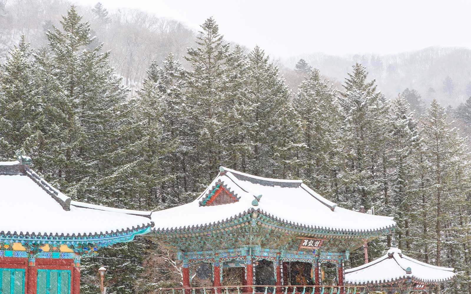 Landscape of snow-covered temple in Pyeongchang, South Korea