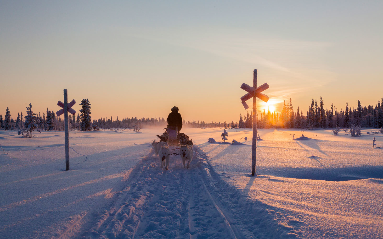 sunset and dogs in Lapland, Finland