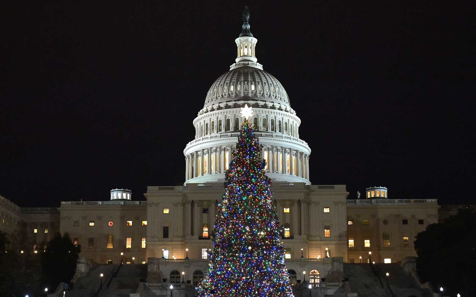 Christmas Tree at the US Capitol