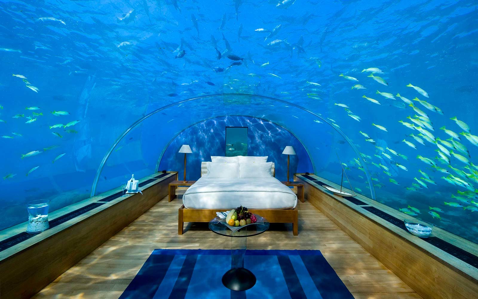 Movie Themed Hotels Poseidon Undersea Fiji
