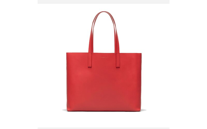 Everlane day market tote