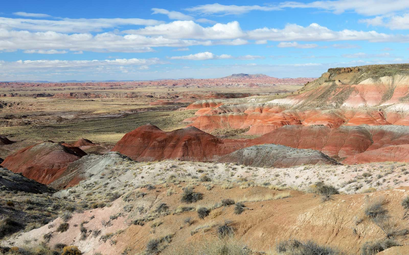 Painted Desert in Petrified Forest National Park