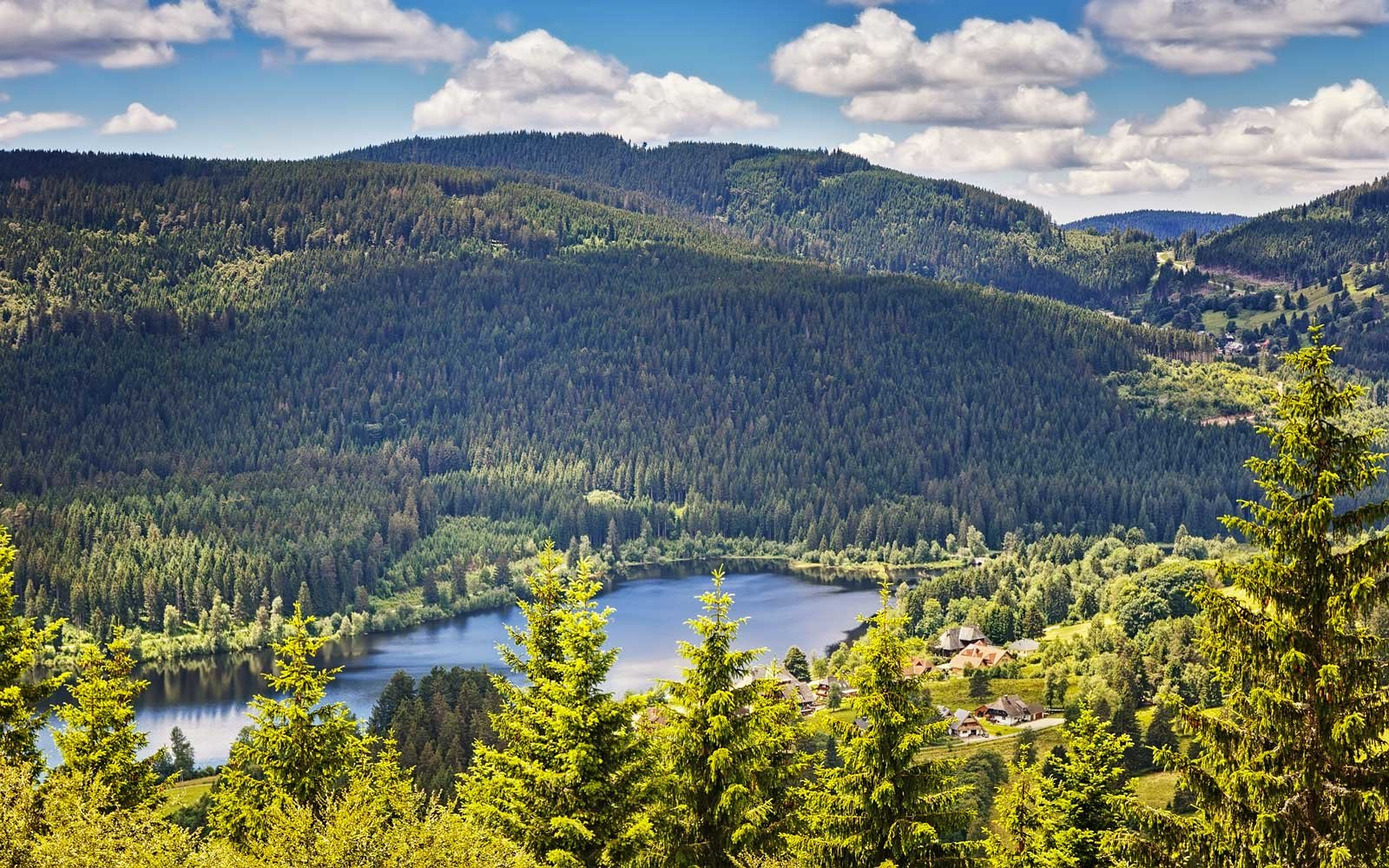 Panoramic view lake Schluchsee. Black Forest. Baden-wuerttemberg region. Germany