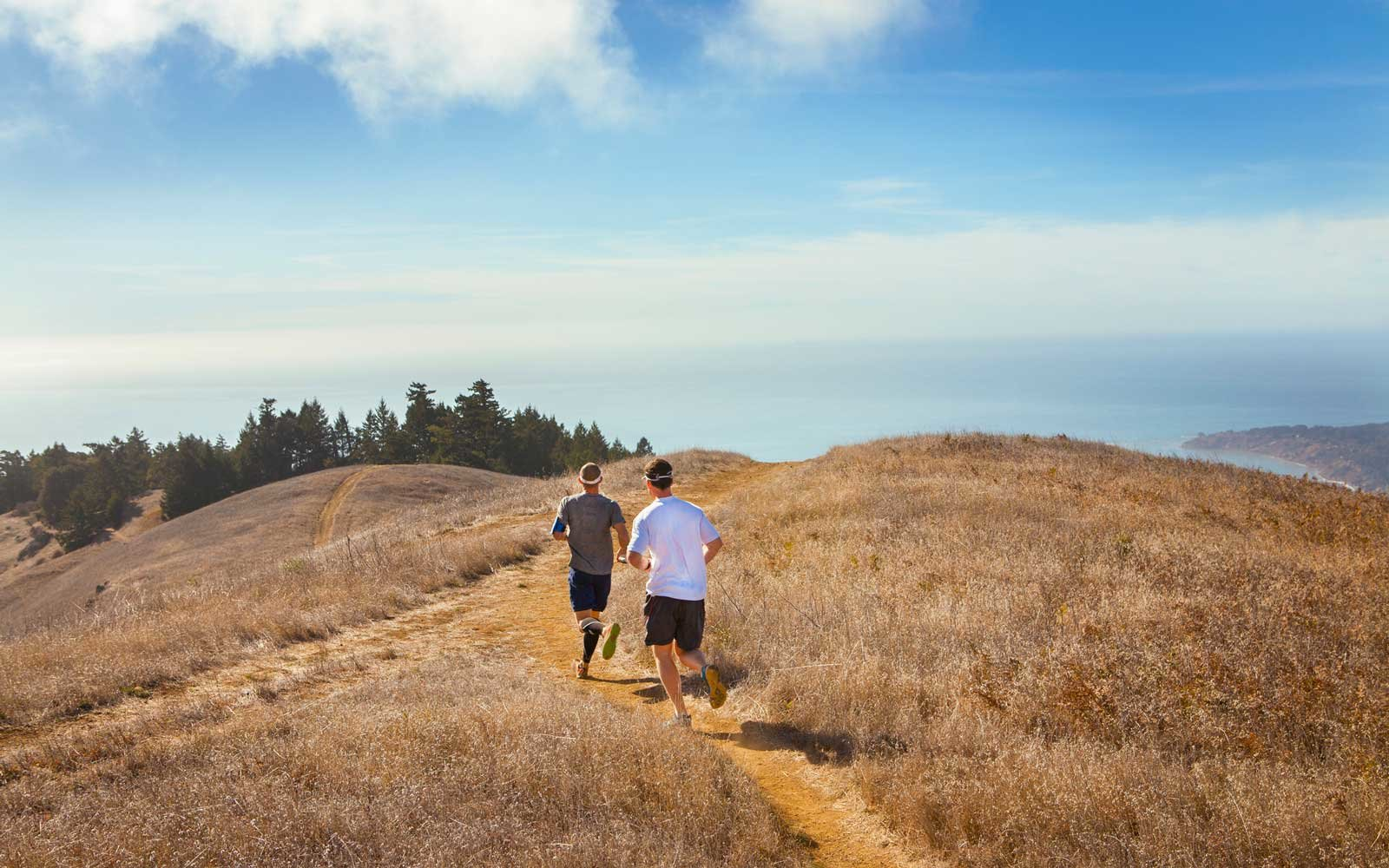 The Dipsea Race in Mill Valley, California