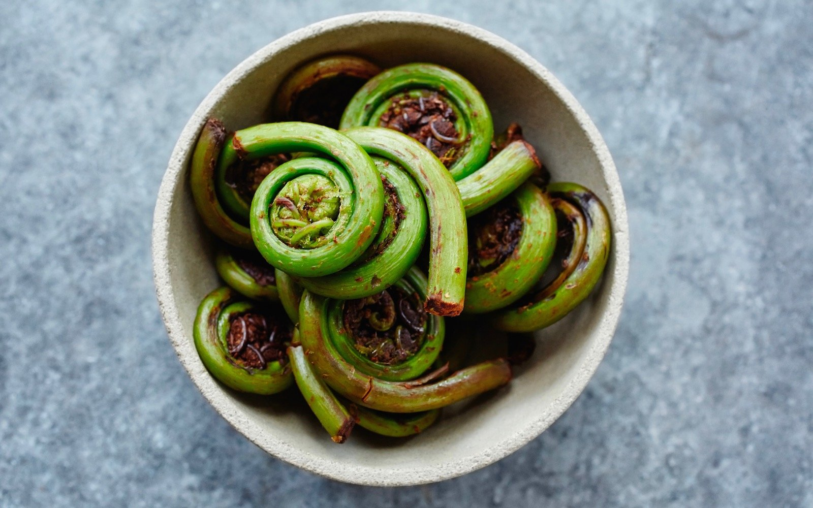 fiddlehead-EDIBLEPLANTS0518.jpg