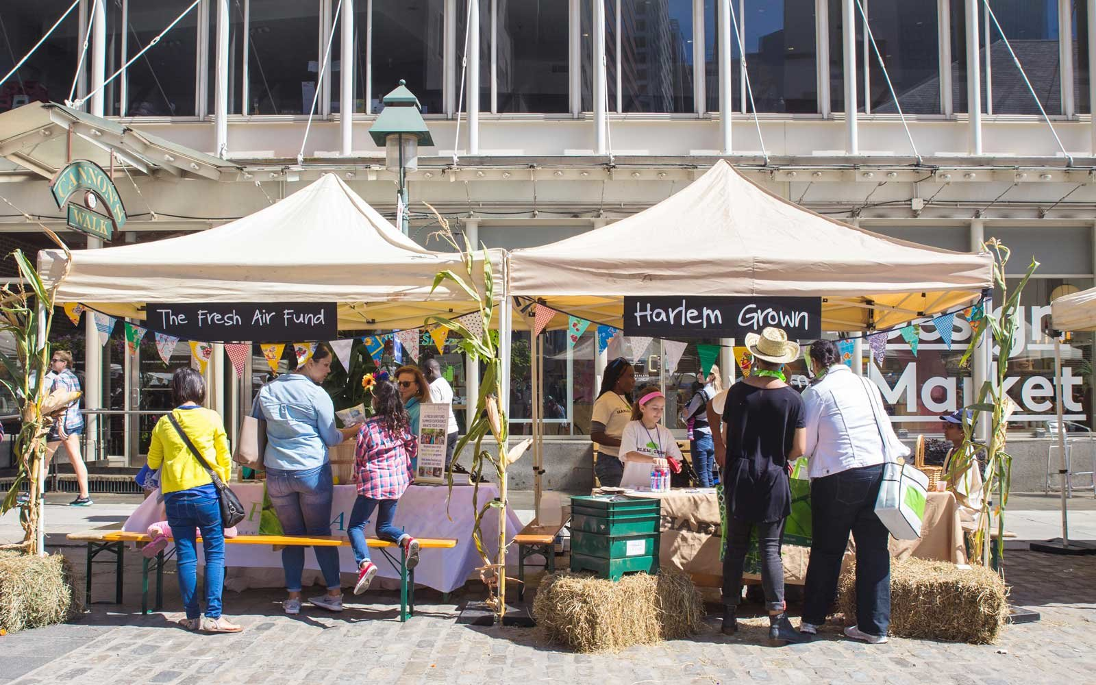 Scene from the Farm Fresh Festival for Kids at the South Street Seaport in Manhattan
