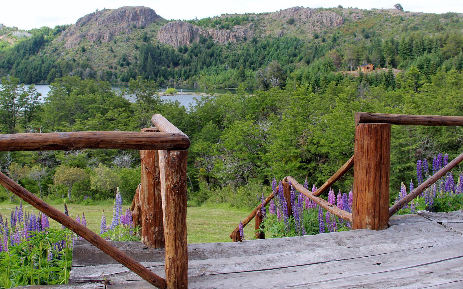 The Laguna Larga Lodge provides you access to the Los Alerces National Park just steps away.