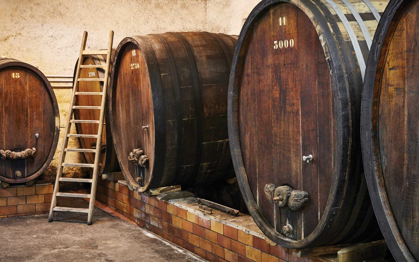 Winery in Strasbourg - Belmond Lilas and Belmond Pivoine's route destinations Alsace and Champagne