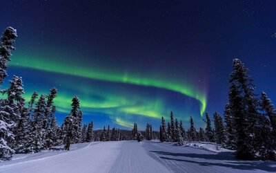 4aef95030163 This Alaskan Train Under the Northern Lights is a Magical Way to ...