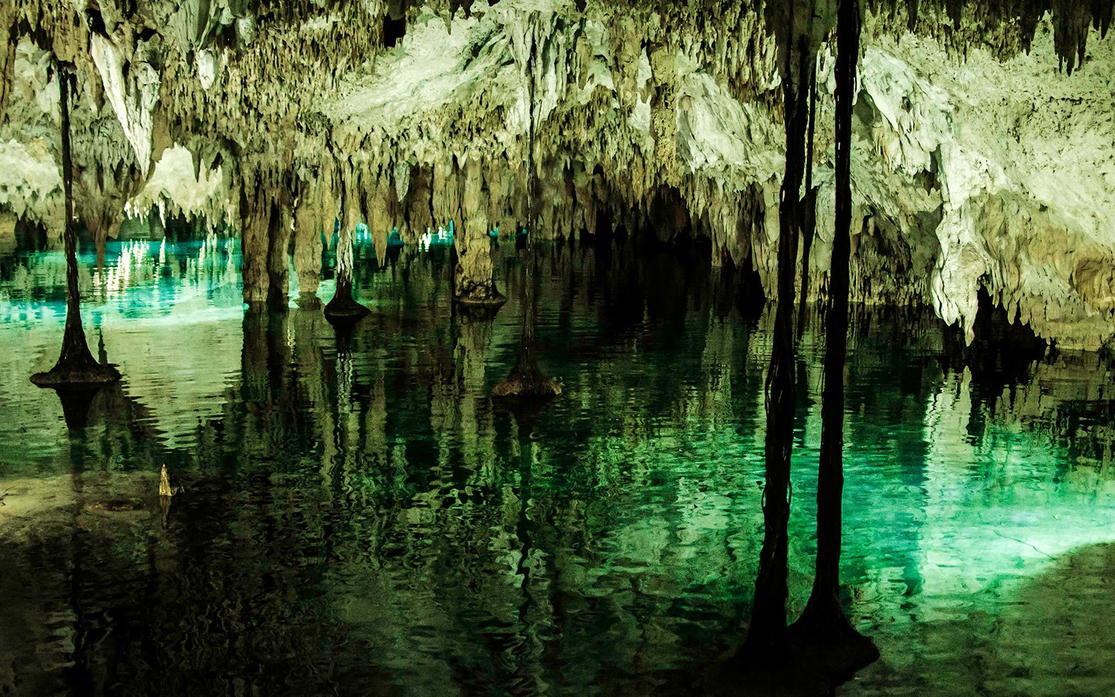 These Secret Mexican Cenotes Are in the Most Unexpected