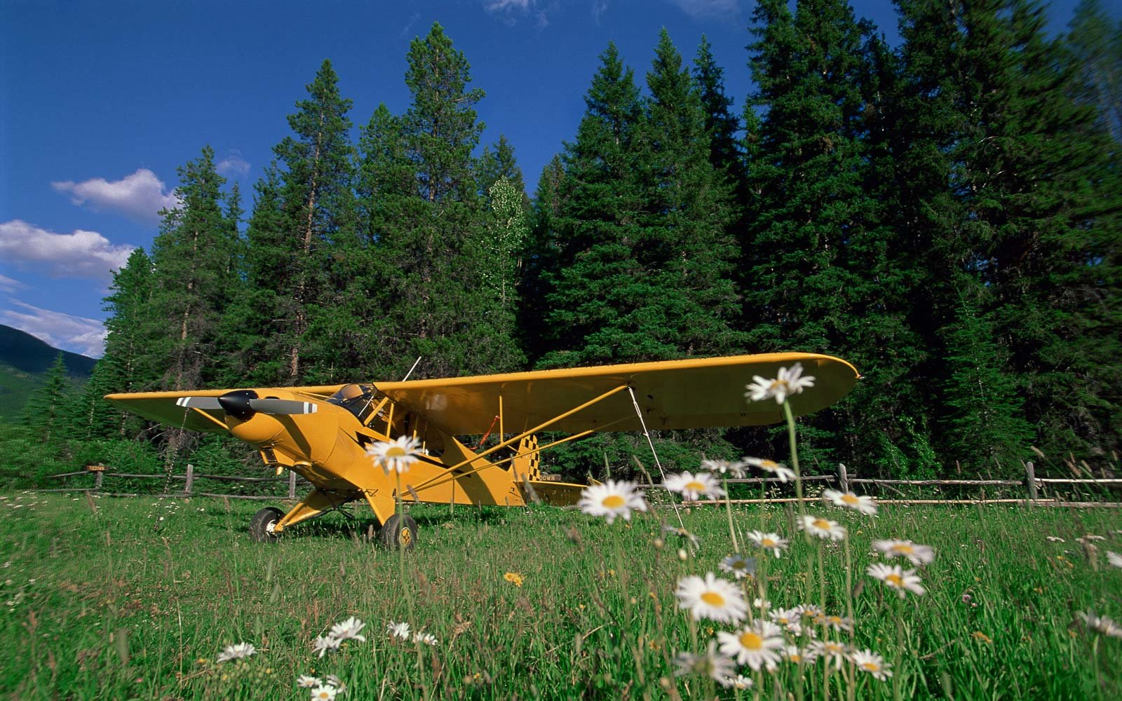 Airplane, Great Bear Wilderness, Montana