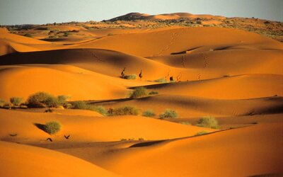 8 Stunningly Beautiful Deserts You Probably Haven't Heard Of