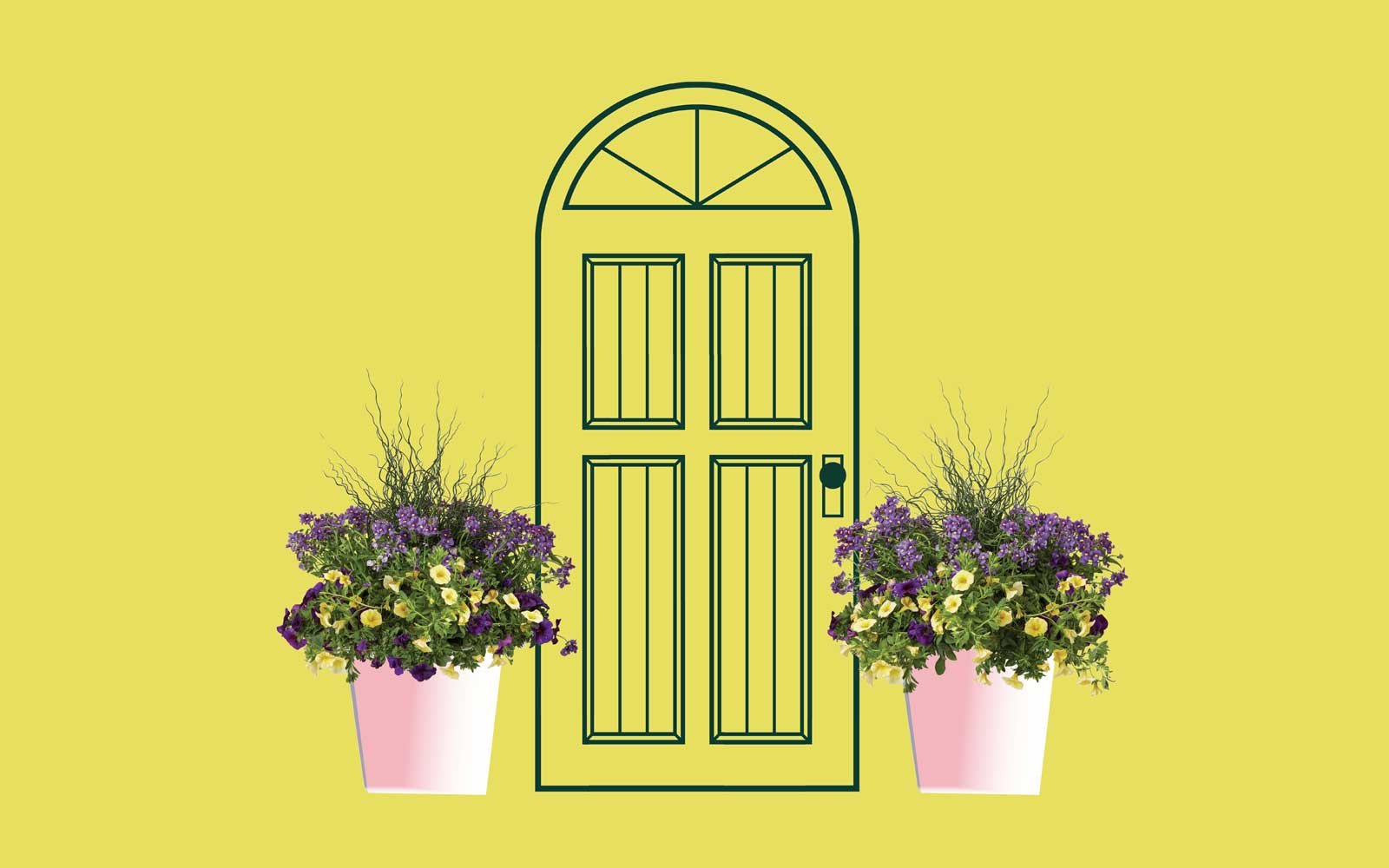 Front door plant Delivery - Knock Knock
