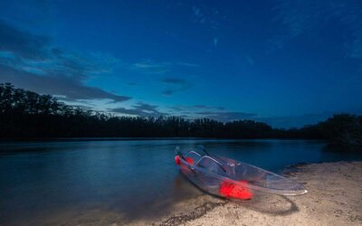 You Can Paddle Through Florida's Bioluminescent Waters in a See