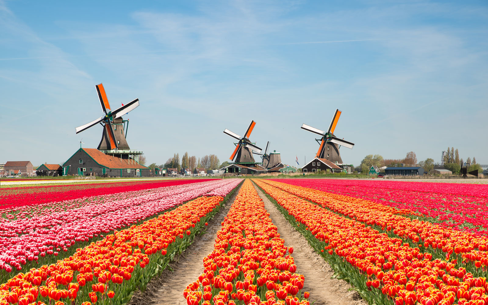 Don't call it Holland: The Netherlands decides on its official name