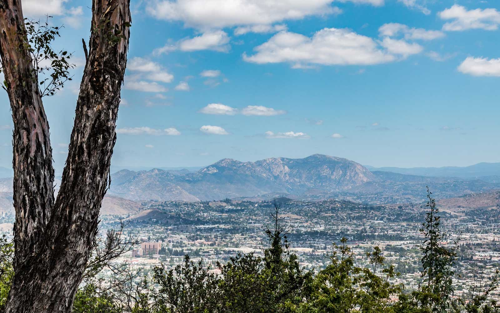 Cuyamaca Peak and El Cajon View From Mt. Helix Park