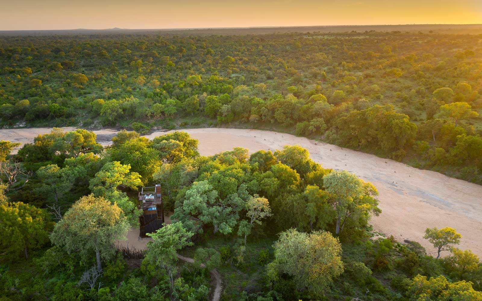 andBeyond Ngala Treehouse in South Africa