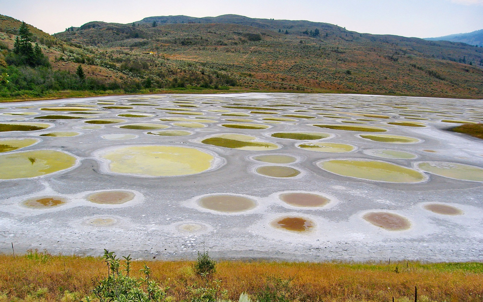 No. 14 World's Strangest Natural Wonders