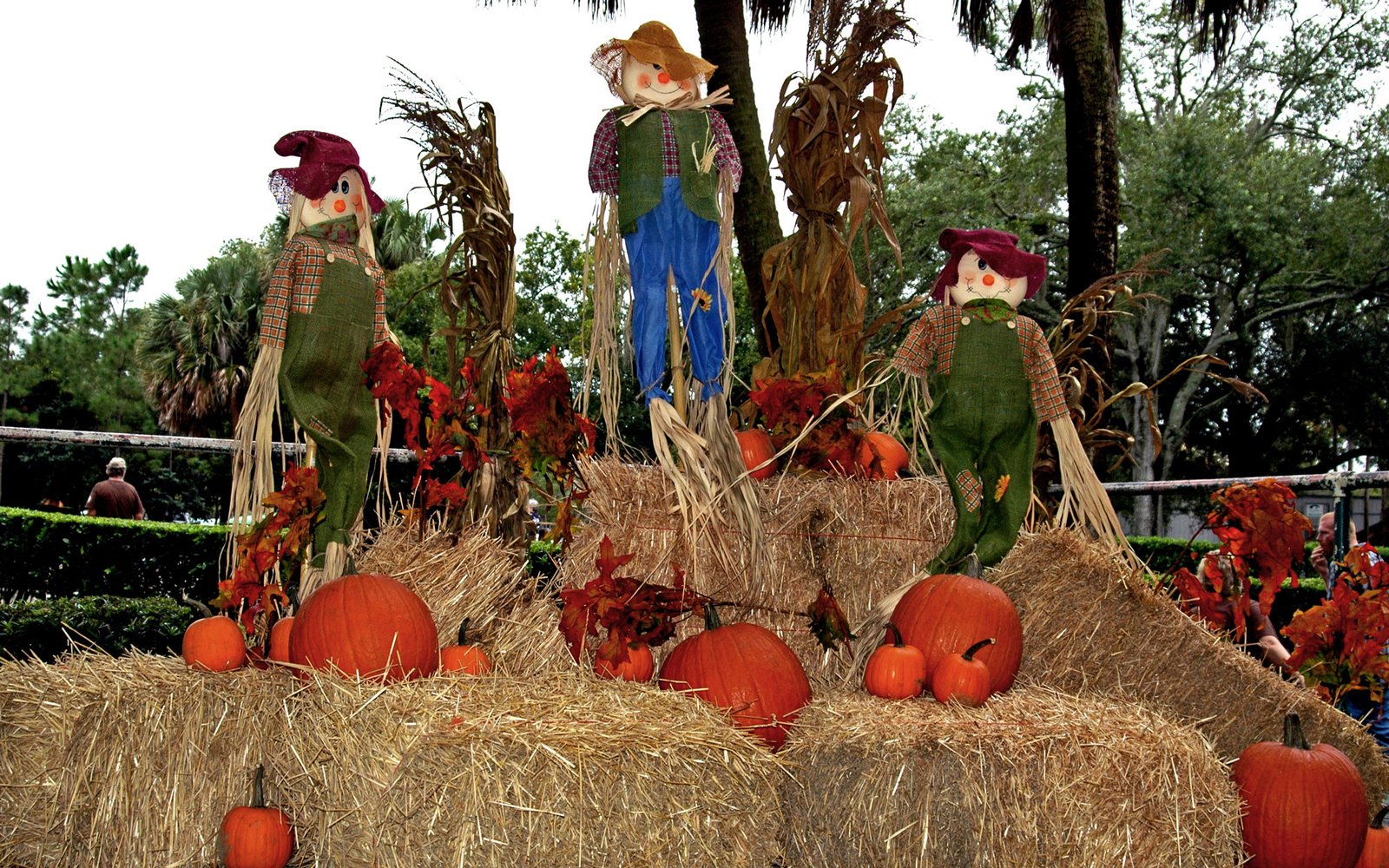 scarecrows and halloween pumpkins in Winter Park, FL