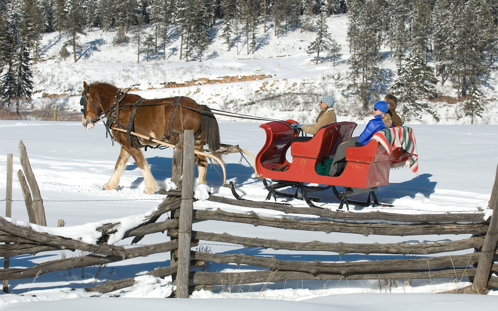 Christmas sleigh ride in Durango, Colorado