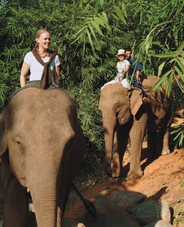 Elephant Mahout TrainingFour Seasons Tented Camp, Northern Thailand