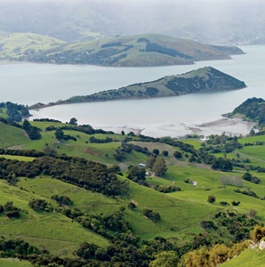 201001-a-welcome-new-zealand