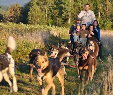 Ziplining and Dogsledding in Northern New Hampshire