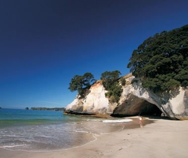 Explore Sea Caves in New Zealand