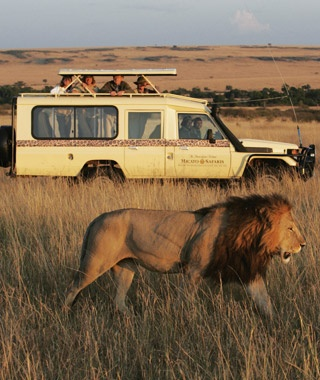Learning Wildlife Photography in the Serengeti