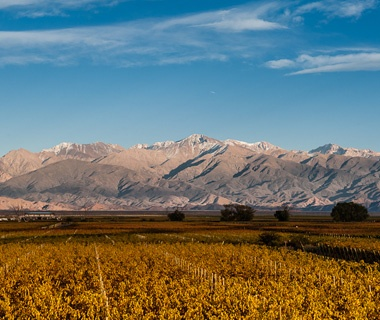 Uco Valley, Argentina