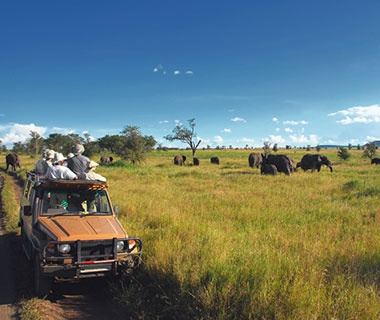 Big Five Tours & Expeditions